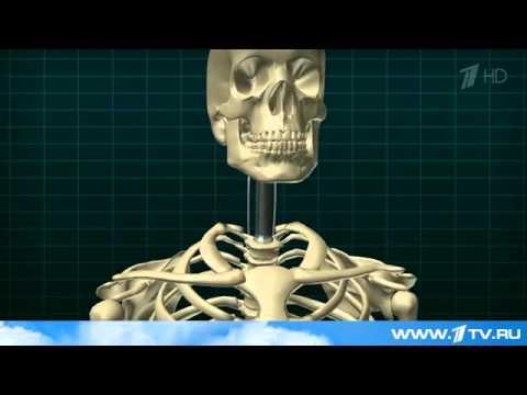Уникальная операция в Петербурге  впервые в мире хирурги заменили шейные позвонки протезом   Первый