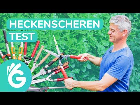 Heckenschere Test – Die 9 Besten im Vergleich