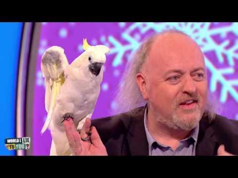 Bill Bailey a papoušek v kině