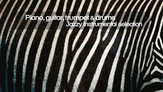 Top Lounge and Chill out Music  - Piano, Guitar, Trumpet and Drums ( Jazzy Instrumental Selection )
