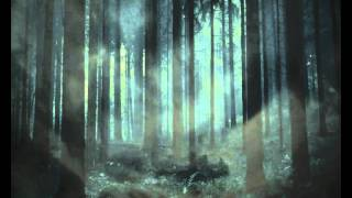 Bat For Lashes  -  A Forest