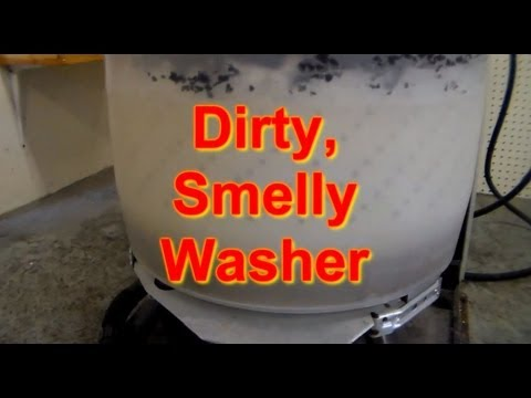 Why does your Washing Machine Smell? Washer Smells