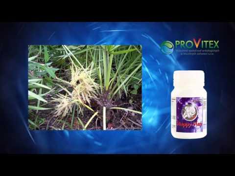 Medicating vesiculitis