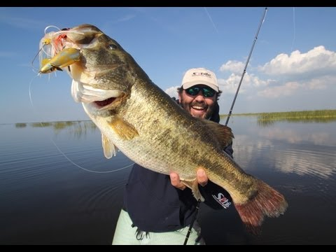 LURED – A NEW IGFA Length World Record Largemouth Bass