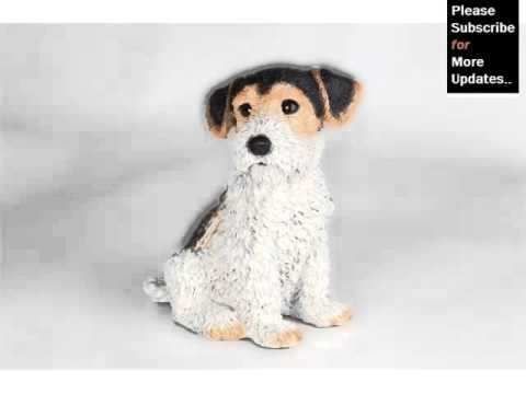 Cute Terrier Breed Collection Of Dogs Picture Ideas | Fox Terrier Puppy Mp3