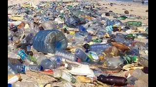 Plastic bag: President Uhuru bans single-use plastics in parks, forests, beaches