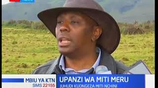 Upanzi wa miti wahimizwa katika kaunti ya Meru