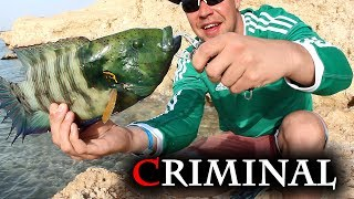Форум рыбалка в египте