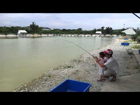 rawang exotic pond fishing