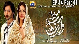 Mera Rab Waris - Episode 14 Part 01   HAR PAL GEO