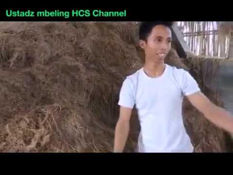 Video Masih muda sukses beternak kambing modern pola hcs