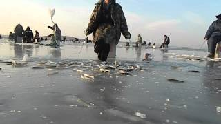 Посьет приморский край зимняя рыбалка