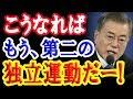 韓国「ホワイト国除外なら第2の独立運動だ!」タイでの日韓外相の会談結果は…!