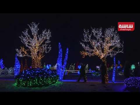 أربعة ملايين مصباح تحول مزرعة في كرواتيا إلى متنزه خيالي