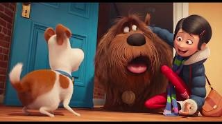 THE SECRET LIFE OF PETS All Trailers