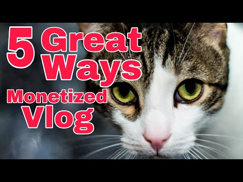 5 GREAT WAYS TO MONETIZE YOUR VLOG