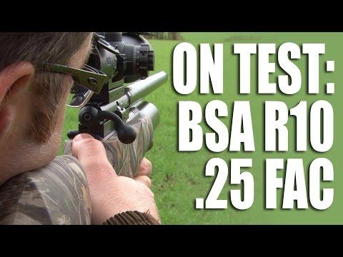 On test: BSA R10 in .25 FAC