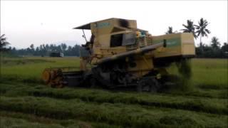Mesin Padi 1545 S Menuai Padi Pokok Tampang Ahad 070816