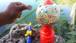 WORLD'S FIRST Gumball Machine AQUARIUM! DIY