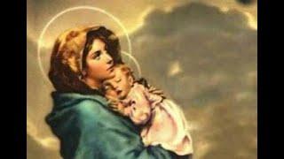 """'Diretta Santa Messa """"Maria Santissima Madre di Dio""""' episoode image"""