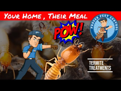 Video Termite Chemical Barrier - Termite Prevention and Treatment