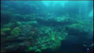 The Cathedral Dive -  ('Remember Me'- Josh Groban)