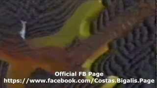 Κώστας Μπίγαλης   Και Καλά Μαγαπας 1989 ( Video Clip HD )