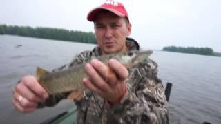 Рыбалка на Волге 22-24июля