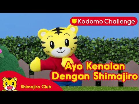 Ayo Kenalan dengan Shimahiro!