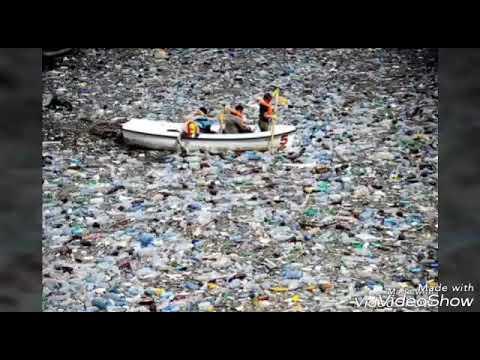 La era del plástico. Que horror!