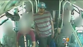 Attacker Stabs Bus Passenger