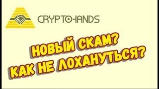 пиримида криптохендс - полный разбор