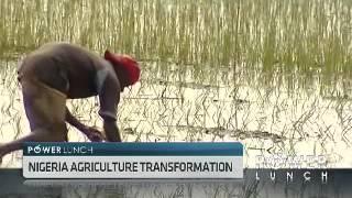 Nigeria's Agriculture Transformation with Akinwunmi Adesina