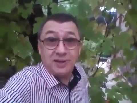 Наставление от долларового миллионера сетевого бизнеса Олега Пермякова.