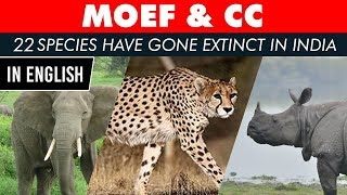 List of extinct Flora & Fauna in India, Why wildlife is vanishing from India? Current Affairs 2019