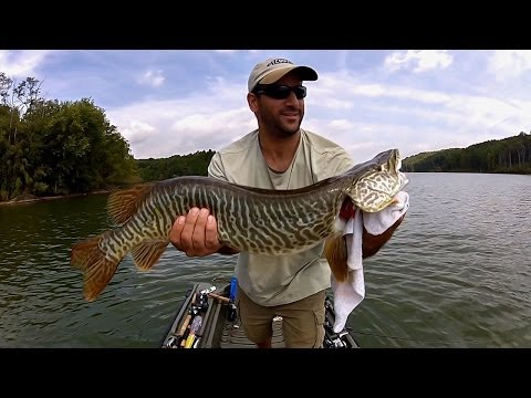Bass Fishing with a Tiger Muskie Surprise! (Little Seneca Lake, MD)