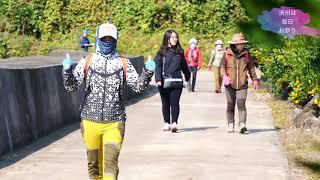 Jeju Olle Walking Festival