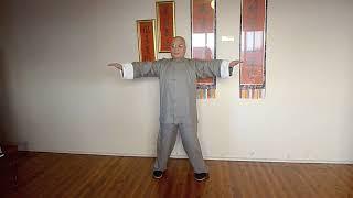 Wing Chun   Siu Nim Tao   by Sifu Derek Fung 詠春   小念頭   馮平波 on Vimeo
