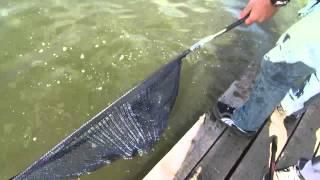 Рыбалка в бариновке самарская область