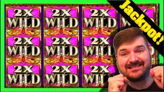 JACKPOT HANDPAY! You Won't Believe How Much 3 Wild Reels With 8X Multiplier Pays! Winning W/ SDGuy
