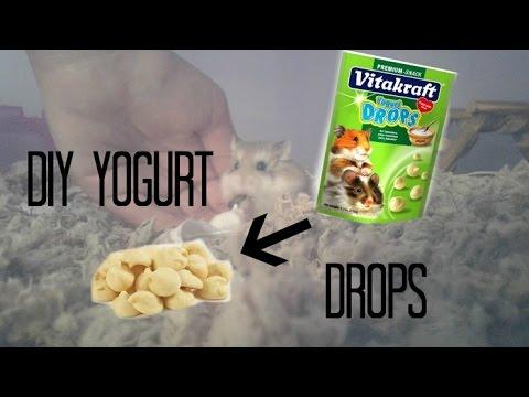 DIY Easy 2 Ingredient Yogurt Drops!