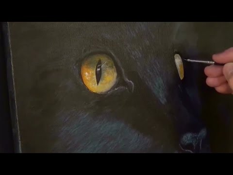 Easy Cat Painting Lesson For Beginners Acrylic Painting Clive5art