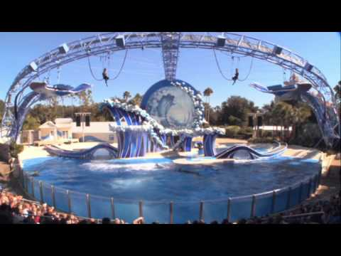 Blue Horizons - The Dolphins Show at Sea World [Complete]