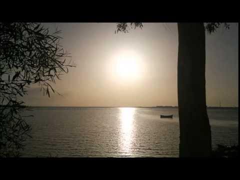 Justin martin & Sammy d - Swamp  Thang (claude vonstroke remix)
