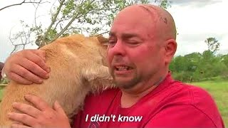 「개 감동의 재회」3, 5 년 만에 주인을 만난 개가 큰 통곡 · 안타까운 울음 소리에 눈물 👩🐶👦