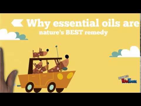 Essential Oil Classes Online