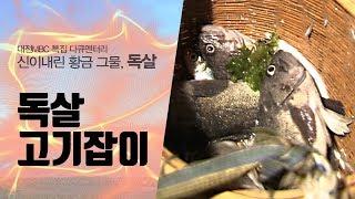 충남 태안 청포대 별주부마을 노루미독살 고기잡이 (다큐멘터리 '독살' 중에서)