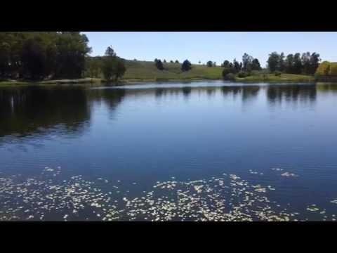 El Paraíso del Iporá 2015, Lago de la Juventud, Tacuarembó Uruguay