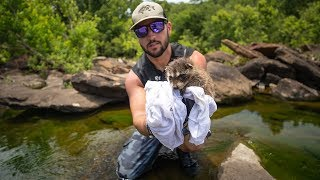 Rescuing BABY Raccoon From Drowning In Creek!! (life saved)| Jiggin' With Jordan