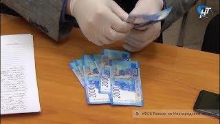 В Новгородской области пытались подкупить руководителя государственного контроля и рыбоохраны